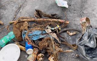 Nel mare di Sorrento recuperati 150 kg di reti fantasma